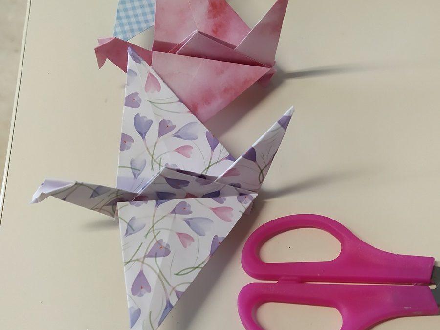 Origami en 5e